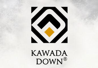 KAWADA DOWN ロゴ